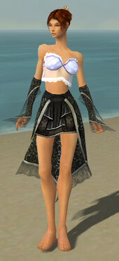 Elementalist Elite Canthan Armor F gray arms legs front