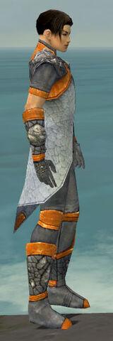 File:Elementalist Stoneforged Armor M dyed side.jpg