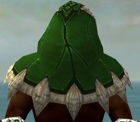 File:Dervish Norn Armor M dyed head back.jpg