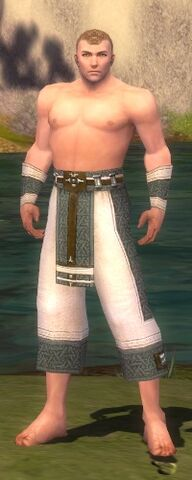 File:Monk Elite Saintly Armor M gray arms legs front.jpg