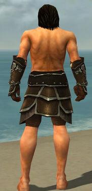 Warrior Shing Jea Armor M gray arms legs back