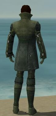 Mesmer Kurzick Armor M gray back