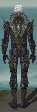 Necromancer Krytan Armor M gray back