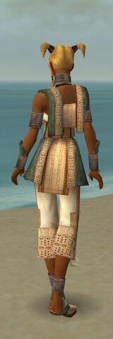 File:Monk Vabbian Armor F gray back.jpg