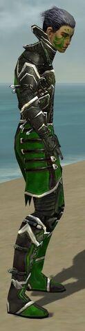 File:Necromancer Elite Kurzick Armor M dyed side.jpg