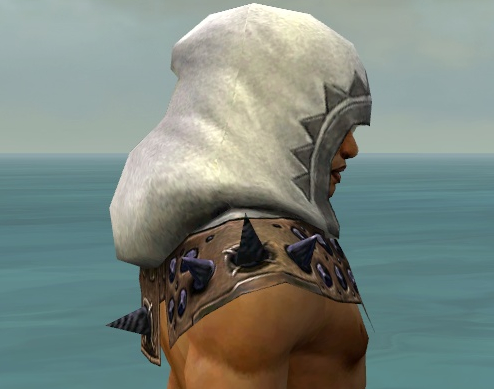 File:Dervish Obsidian Armor M dyed head side.jpg