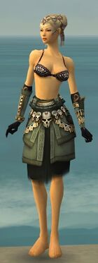 Ritualist Elite Imperial Armor F gray arms legs front