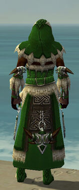 Dervish Norn Armor M dyed back