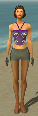 Mesmer Elite Enchanter Armor F gray arms legs front