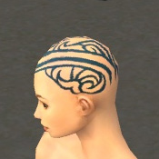 File:Monk Asuran Armor F dyed head side.jpg