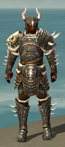 File:Warrior Norn Armor M gray front.jpg