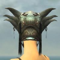 File:Warrior Silver Eagle Armor F gray head back.jpg