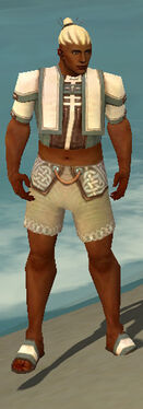 Monk Sacred Armor M gray chest feet front