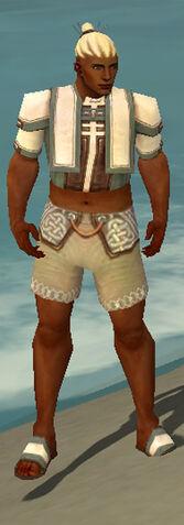 File:Monk Sacred Armor M gray chest feet front.jpg