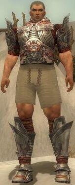 Warrior Asuran Armor M gray chest feet front