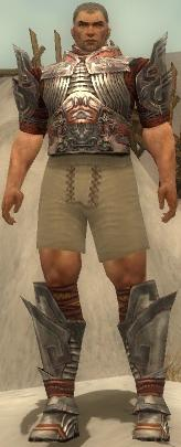 File:Warrior Asuran Armor M gray chest feet front.jpg