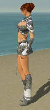 Elementalist Iceforged Armor F gray side