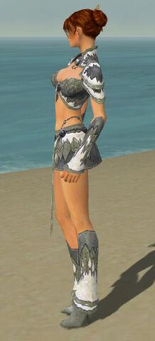 File:Elementalist Iceforged Armor F gray side.jpg