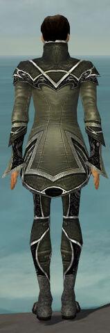 File:Elementalist Shing Jea Armor M gray back.jpg