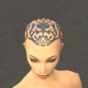 File:Monk Elite Sunspear Armor F gray head front.jpg
