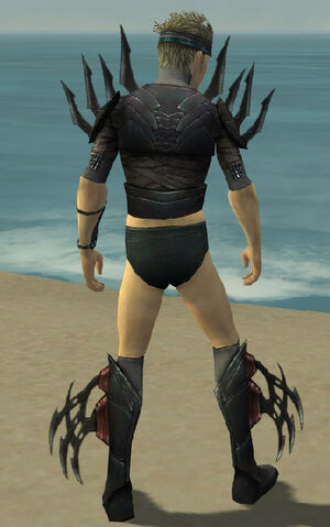 File:Assassin Ancient Armor M gray chest feet back.jpg