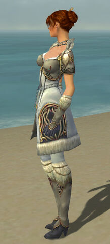 File:Elementalist Norn Armor F gray side.jpg
