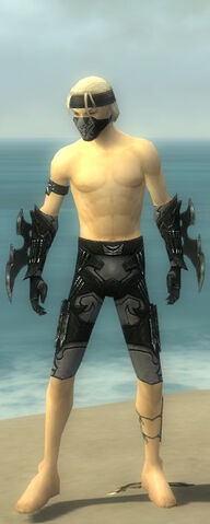 File:Assassin Kurzick Armor M gray arms legs front.jpg