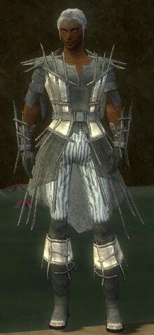 File:Elementalist Primeval Armor M gray front.jpg