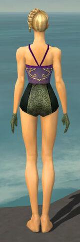 File:Mesmer Shing Jea Armor F gray arms legs back.jpg