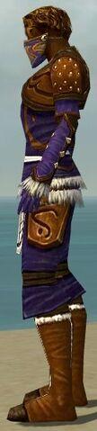 File:Ranger Canthan Armor M dyed side alternate.jpg