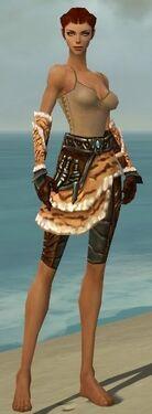 Ranger Vabbian Armor F gray arms legs front