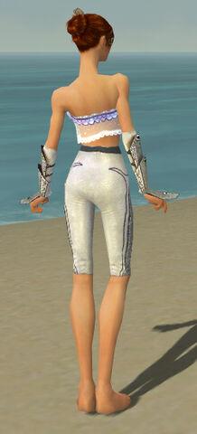 File:Elementalist Tyrian Armor F gray arms legs back.jpg
