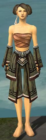 File:Monk Kurzick Armor F gray arms legs front.jpg