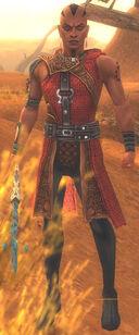 Shining Blade Elementalist