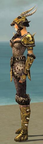 File:Warrior Elite Charr Hide Armor F dyed side.jpg