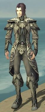 Elementalist Monument Armor M gray front