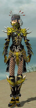 Necromancer Elite Luxon Armor F dyed front