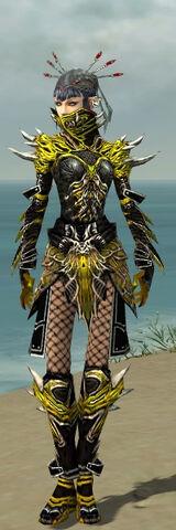 File:Necromancer Elite Luxon Armor F dyed front.jpg
