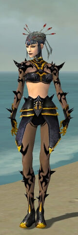File:Necromancer Obsidian Armor F dyed front.jpg