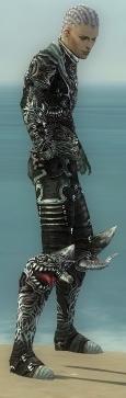 File:Necromancer Canthan Armor M gray side.jpg