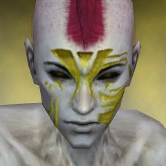 File:Necromancer Elite Luxon Armor M dyed head front.jpg