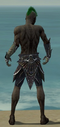 File:Necromancer Elite Necrotic Armor M gray arms legs back.jpg