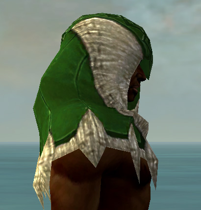 File:Dervish Norn Armor M dyed head side.jpg