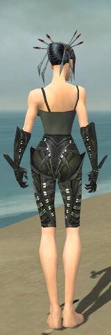 File:Necromancer Necrotic Armor F gray arms legs back.jpg