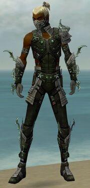 Assassin Elite Luxon Armor M gray front