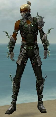 File:Assassin Elite Luxon Armor M gray front.jpg
