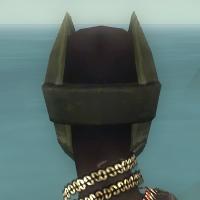 File:Ritualist Kurzick Armor F gray head back.jpg