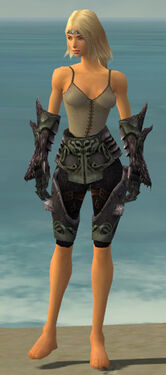 Warrior Primeval Armor F gray arms legs front