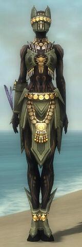 File:Ritualist Elite Kurzick Armor F gray front.jpg