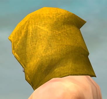 File:Shining Blade Uniform M dyed head side alternate.jpg